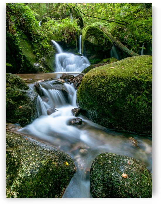Small Waterfall in the German Black Forest by Andreas Wonisch