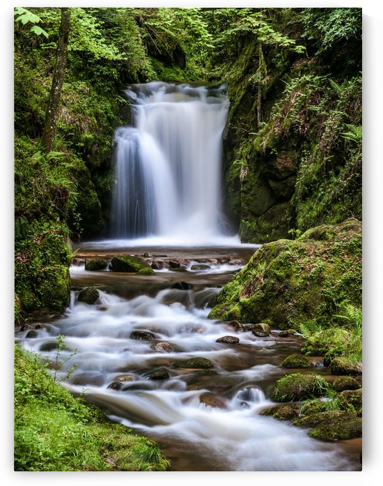 Watefall in the Black Forest in Germany by Andreas Wonisch
