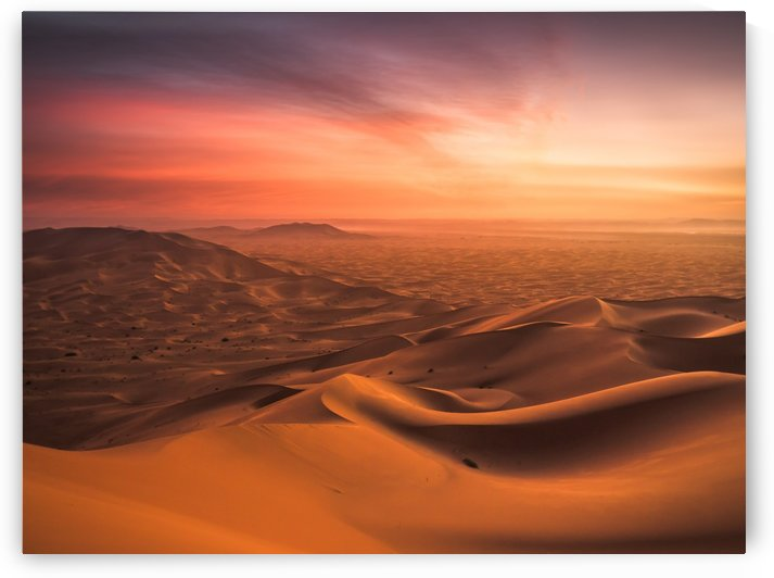 Sunset in the Desert by Andreas Wonisch
