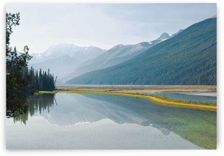 Canadian Rockies Reflected In Beauty Creek, Jasper National Park, Alberta, Canada by PacificStock