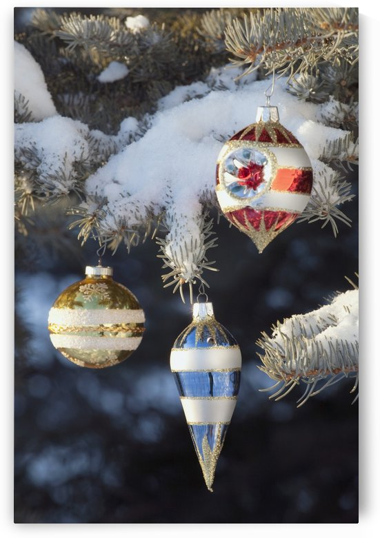 Christmas Ornaments by PacificStock