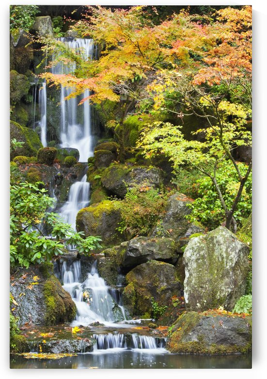 Portland Japanese Garden, Portland, Oregon, Usa by PacificStock