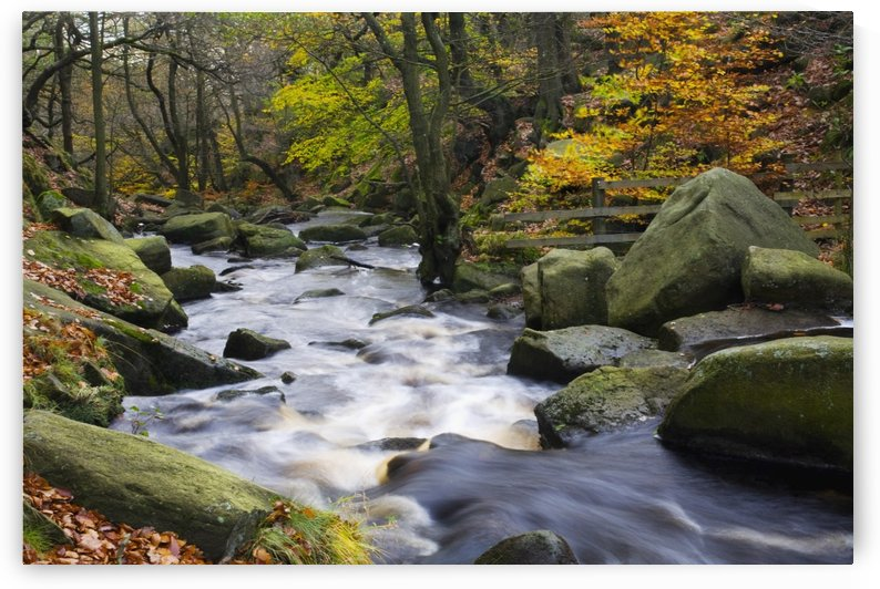 Padley Gorge, Derbyshire, England; Burbage Brook In Autumn by PacificStock