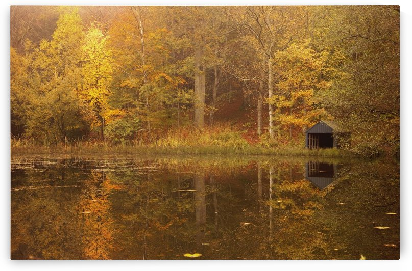 Northumberland, England; Trees Along The Water In Autumn With A Small Shed On The Shore by PacificStock