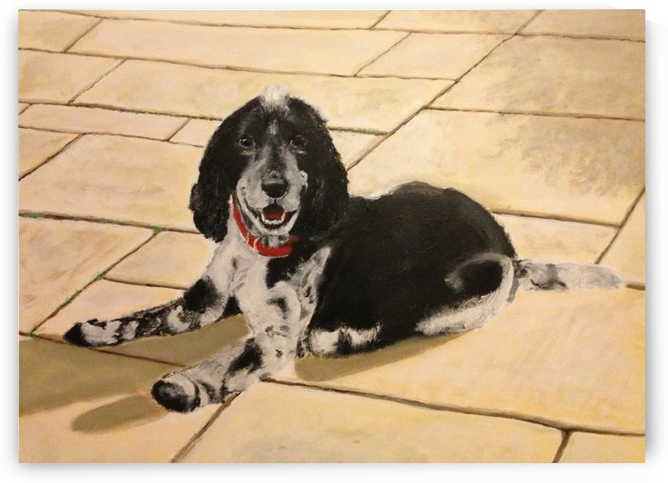 Cocker Spaniel by Tidwell