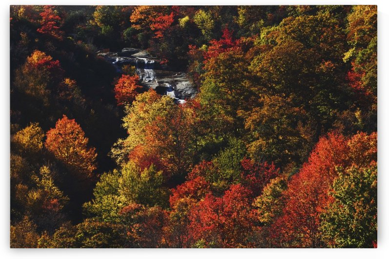 Blue Ridge Parkway, North Carolina, United States Of America; Second Falls Of The Yellowstone Prong And Autumn Colors At Graveyard Fields by PacificStock