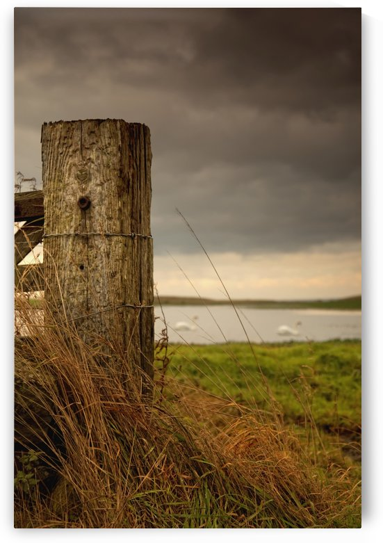 Northumberland, England; A Wooden Fence Post And A Pond In A Field by PacificStock