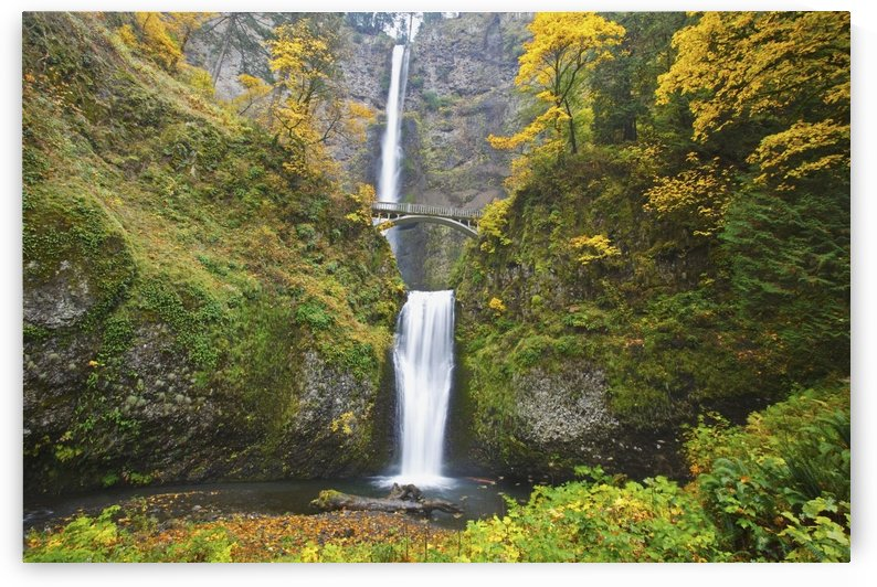 Waterfalls Falling Into A Pool Of Water In A Forested Area by PacificStock