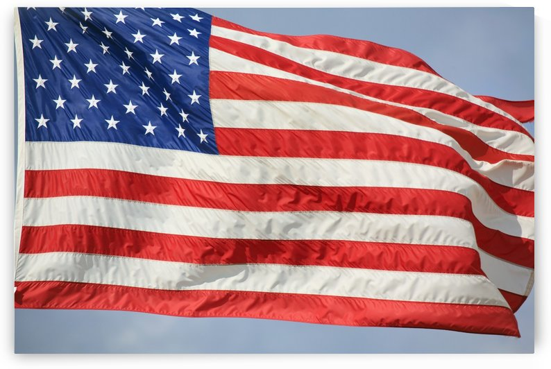 The Flag Of The United States Of America by PacificStock