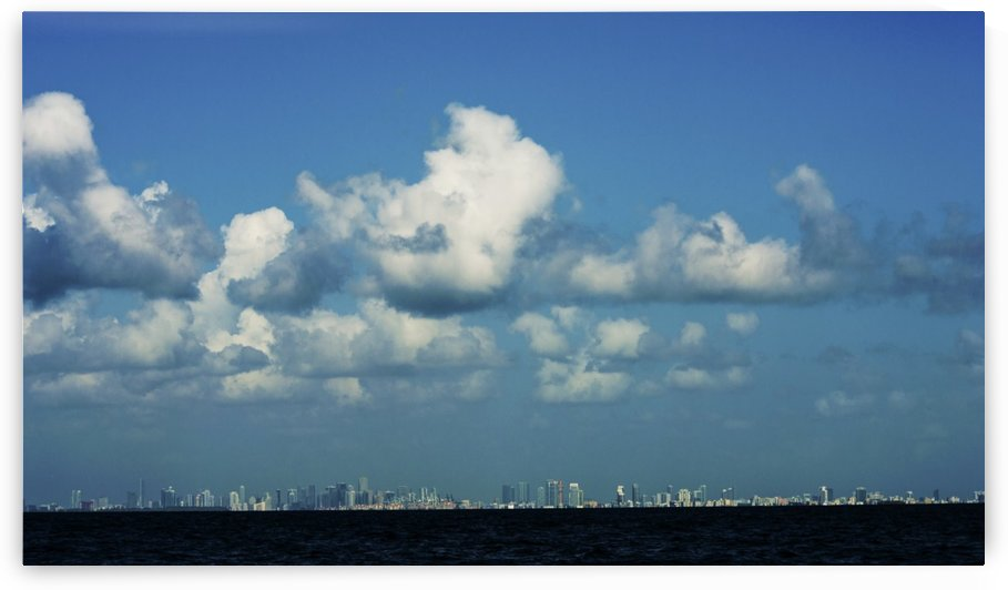 Miami Skyline by Cameron Young