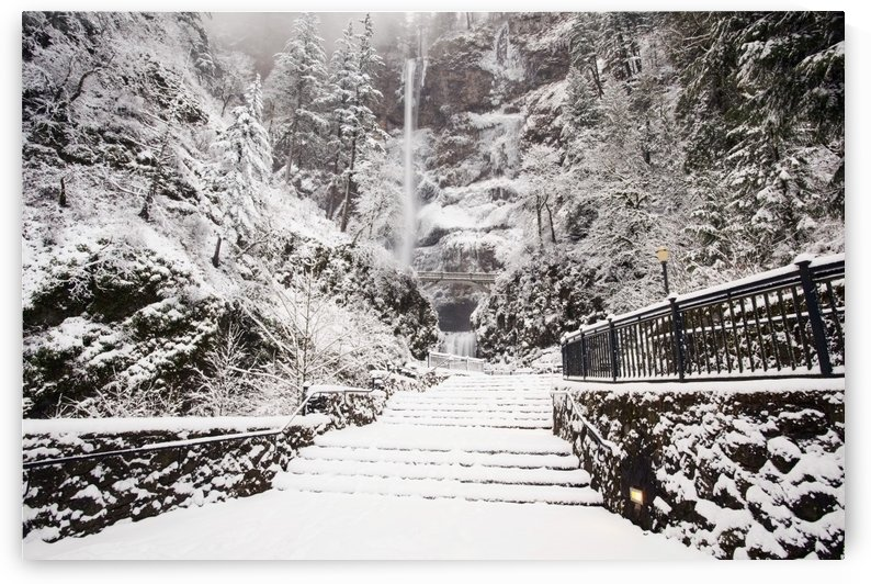Columbia River Gorge National Scenic Area, Oregon, United States Of America; Snow Covering The Steps Through The Forest by PacificStock
