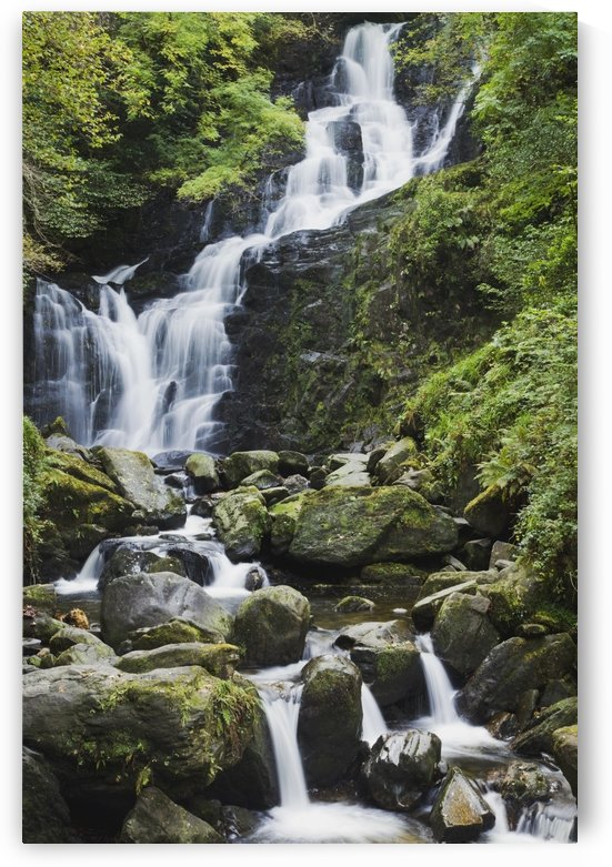 Killarney, County Kerry, Ireland; Torc Waterfall On Torc Mountain by PacificStock