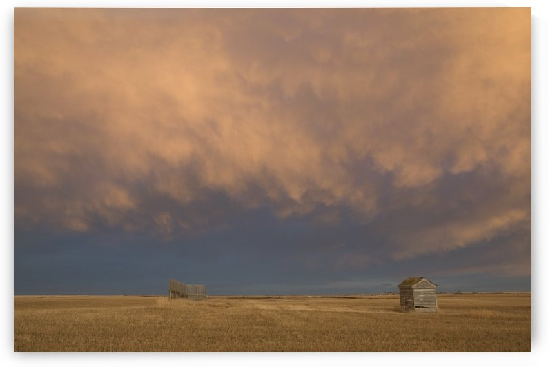 Alberta, Canada; A Wooden Shack On A Cut Wheat Field With A Dramatic Cloudy Sky At Sunset by PacificStock
