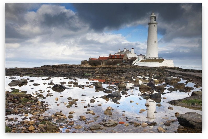 St. Mary's Island, Northumberland, England; St. Mary's Lighthouse by PacificStock