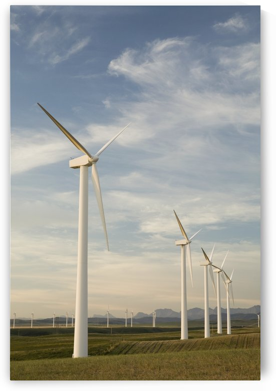 Pincher Creek, Alberta, Canada; Wind Turbines In A Row by PacificStock