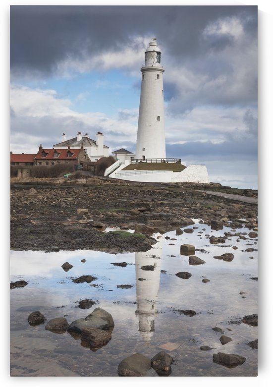 Northumberland, England; St. Mary's Lighthouse by PacificStock