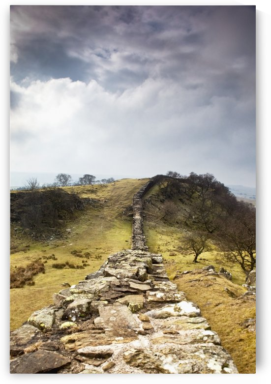 Northumberland, England; Hadrian's Wall by PacificStock