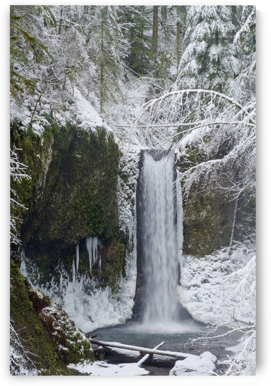 Oregon, United States Of America; Wiesendanger Falls In Winter In The Columbia River Gorge by PacificStock