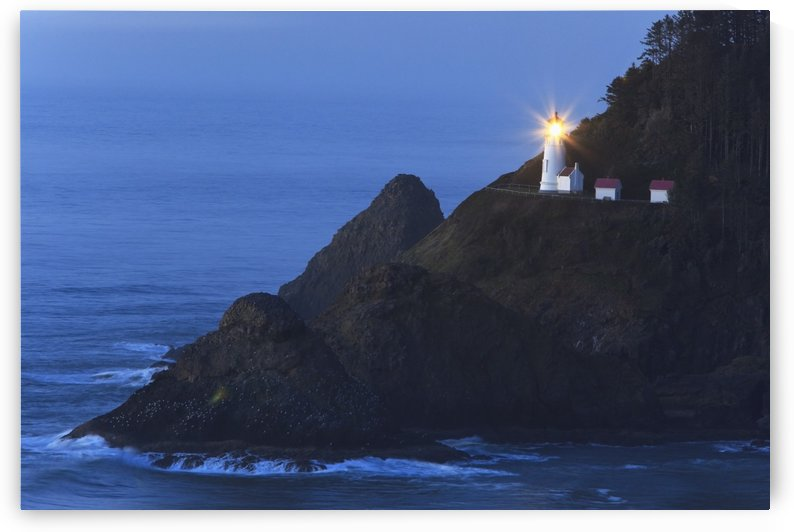 Oregon, United States Of America; Heceta Head Lighthouse At Sunset by PacificStock