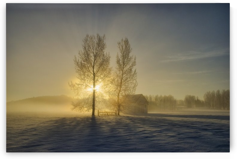 Calgary, Alberta, Canada; A Small Pioneer School In A Misty Winter Sunrise by PacificStock