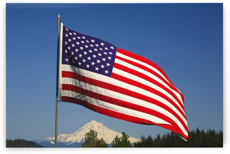 The American Flag by PacificStock
