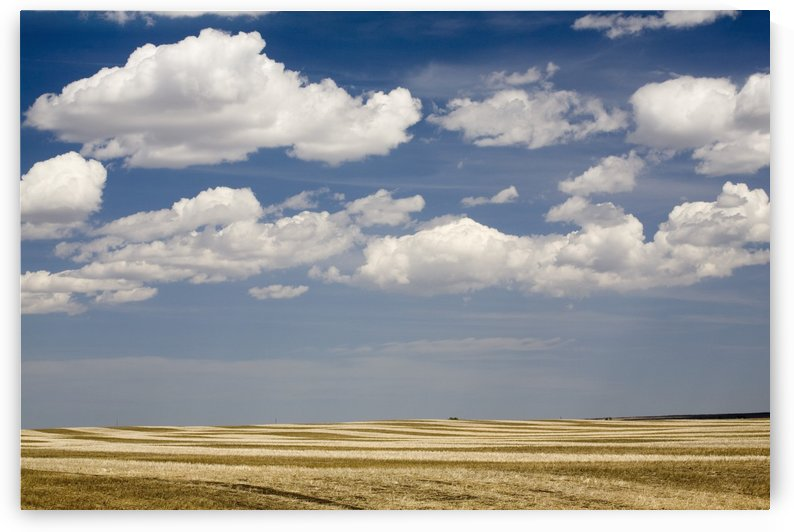 Calgary, Alberta, Canada; Stubble Field In The Spring by PacificStock