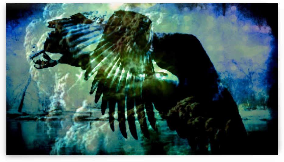 eagle by jessica bell