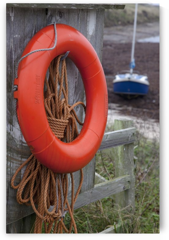 An Orange Life Preserver Ring And Rope Hanging On A Wooden Shed Wall; Northumberland, England by PacificStock