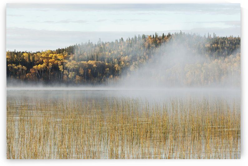 Mist Over A Lake In Autumn; Ontario, Canada by PacificStock