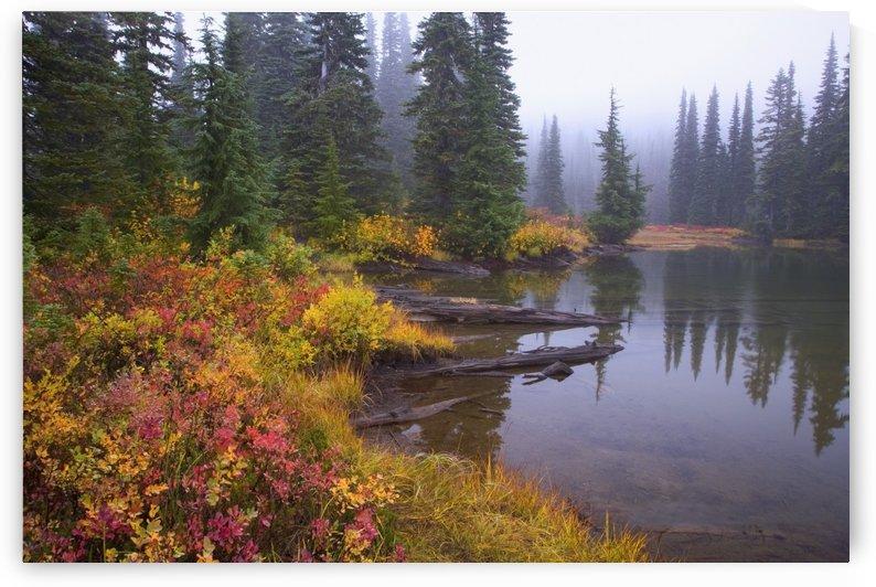 Reflection On Lake In Autumn; Mount Rainier National Park, Washington, Usa by PacificStock