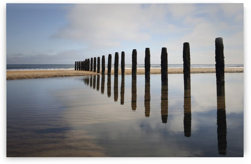 Groynes; Blyth, Northumberland, England by PacificStock