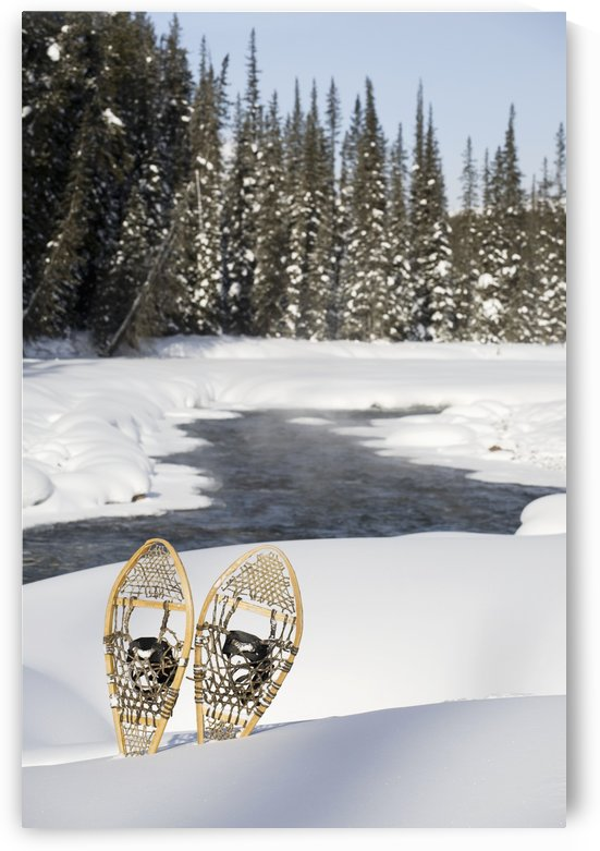Snowshoes By Snowy Lake; Lake Louise, Alberta, Canada by PacificStock