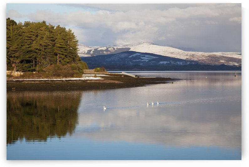 Cloud Reflections In Kenmare Bay; Kenmare County Kerry Ireland by PacificStock