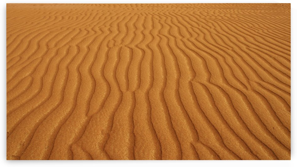Patterns In The Desert Sand; Sultanate Of Oman by PacificStock