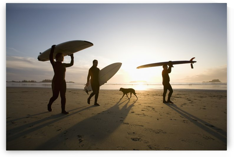 Silhouette Of Three Surfers And A Dog; Chesterman Beach Tofino Vancouver Island British Columbia Canada by PacificStock