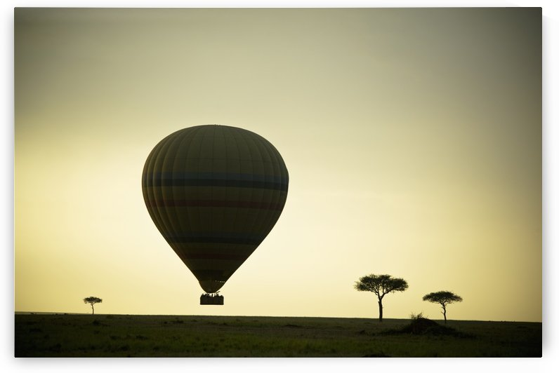 Silhouette Of A Hot Air Balloon Just Off The Ground At Dusk; Masai Mara, Kenya by PacificStock