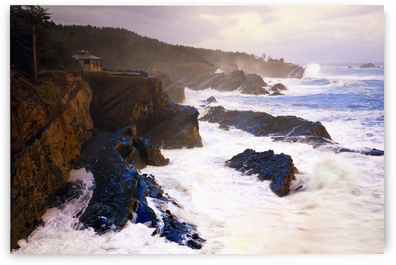 Winter Storm At Shore Acres State Park Along The Oregon Coast; Oregon, United States of America by PacificStock