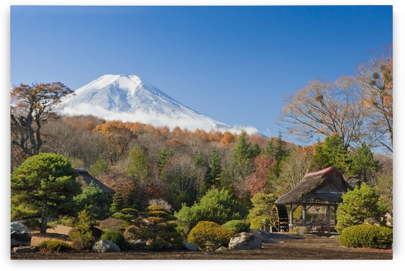 View Of Mount Fuji From A Japanese Garden; Japan by PacificStock