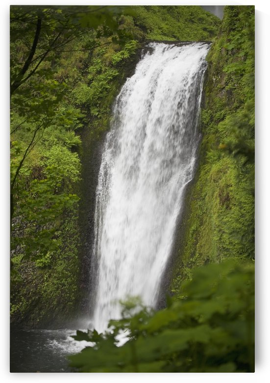 Lower Section Of Multnomah Falls; Oregon, United States of America by PacificStock