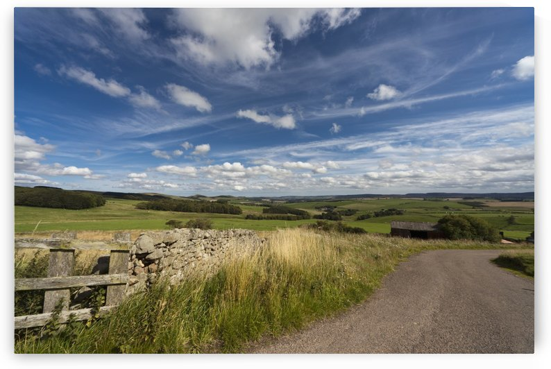 A Country Road With A Hilly Landscape; Northumberland, England by PacificStock