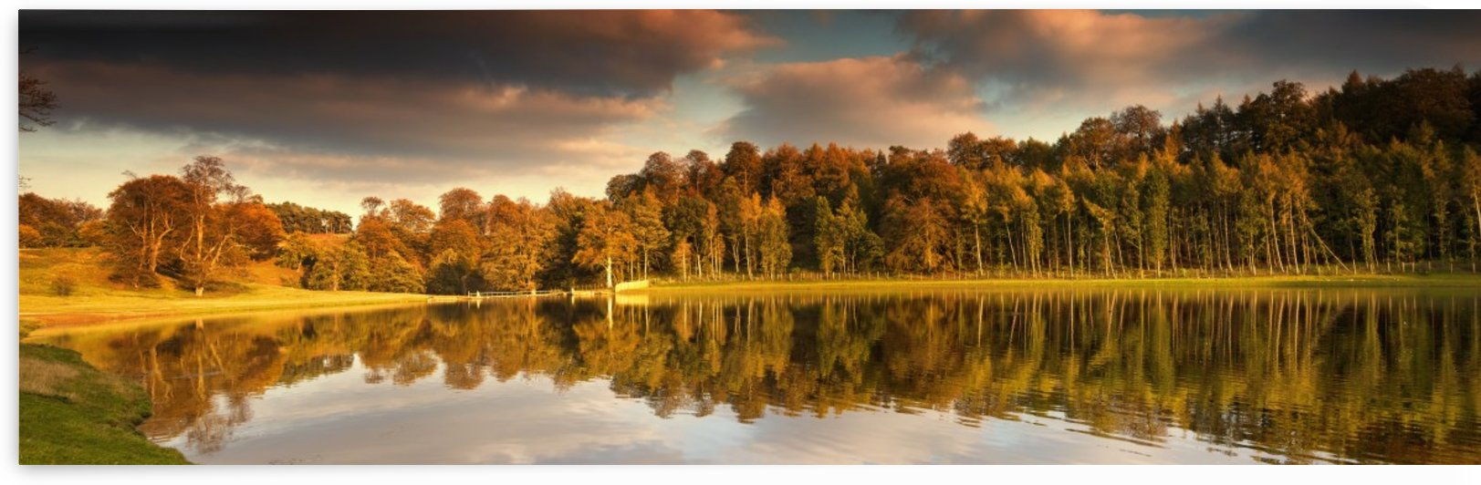 Trees Lining The Water's Edge Reflected In The Water In Autumn; North Yorkshire, England by PacificStock