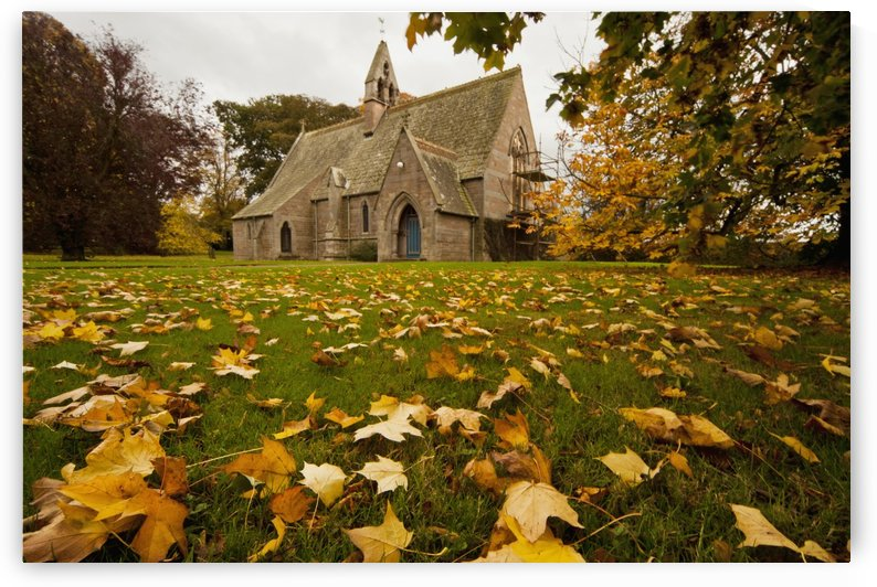 Fallen Leaves On The Grass In Front Of A Church In Autumn; Northumberland, England by PacificStock