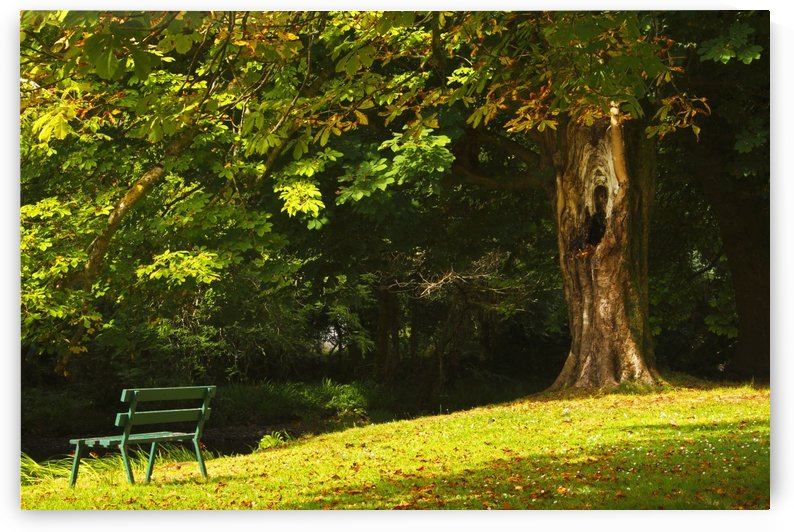 Park Bench Beside The Owenriff River In Oughterard Village; County Galway, Connacht Region, Ireland by PacificStock