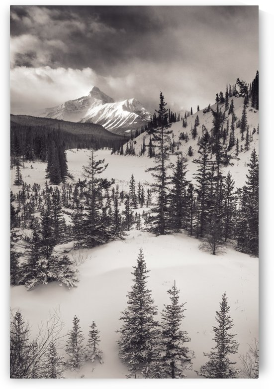 Mountt Sarbach And The North Saskatchewan River In Winter - Banff National Park, Alberta, Canada by PacificStock