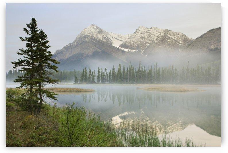 Whitegoat Lake And Mount Elliot, Kootenay Plains, Alberta, Canada by PacificStock