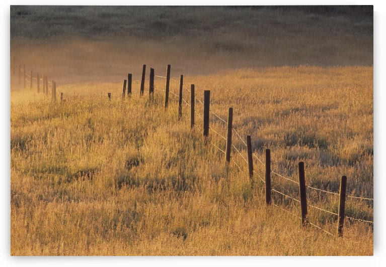 Fence In Pasture Near Cochrane, Alberta, Canada by PacificStock