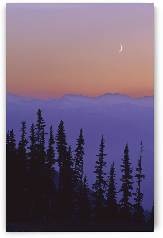 Crescent Moon Rises In Sunset Over Mountains, Whistler, Bc Canada by PacificStock