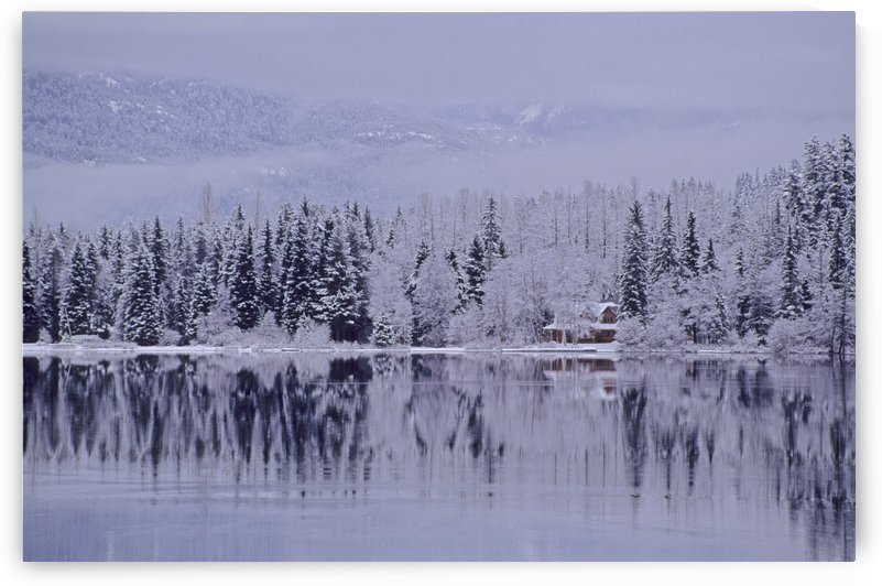 Early Winter Snow Greys The Trees, Reflection In Lake, Alta Lake, Whistler, B.C. by PacificStock
