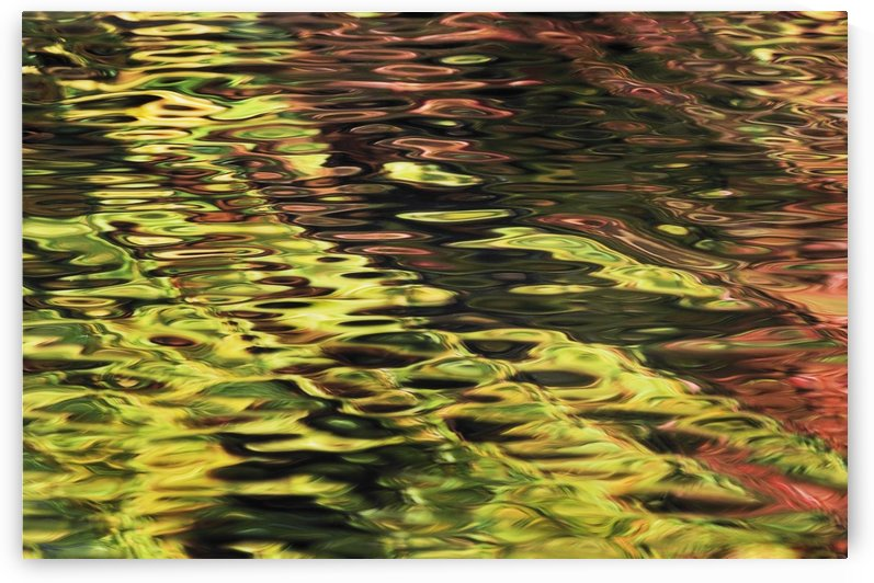Oak And Maple Trees Reflections In Water. Autumn. by PacificStock