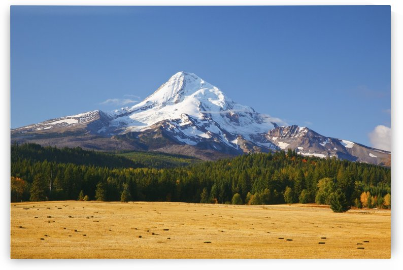 Mount Hood; Oregon, United States of America by PacificStock